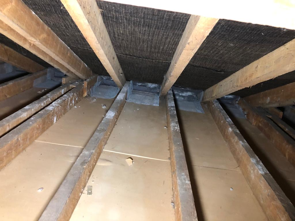 Attic rodent proofing