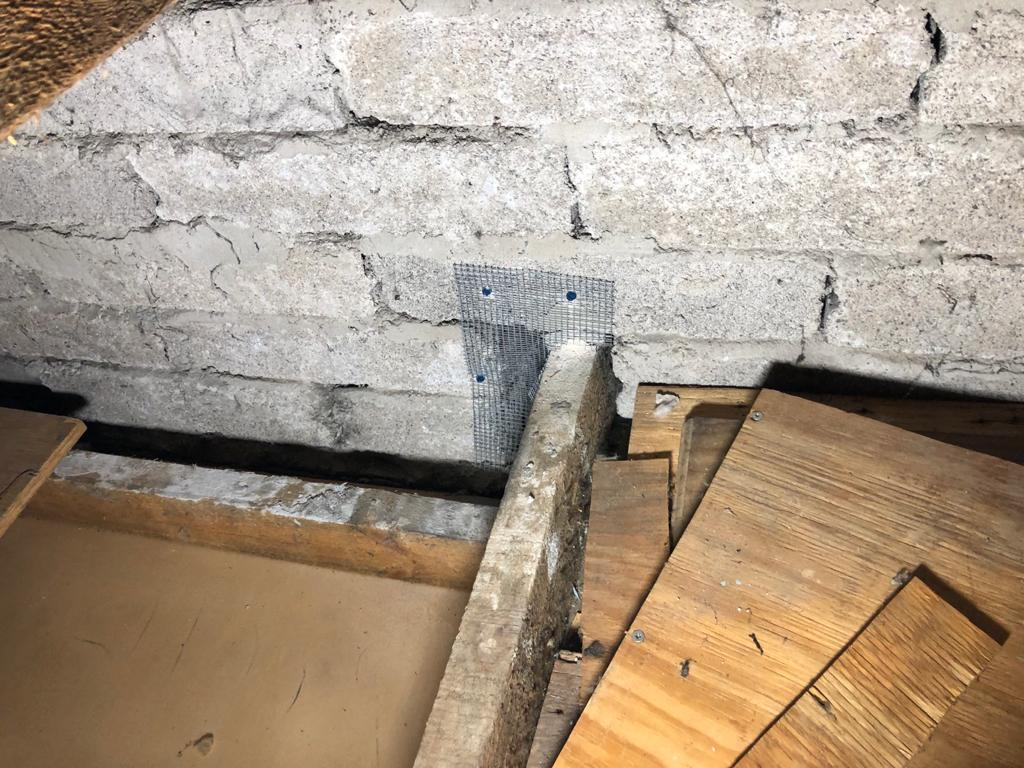 Rodent attic proofing services